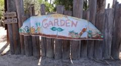 Laguna Beach Garden Club