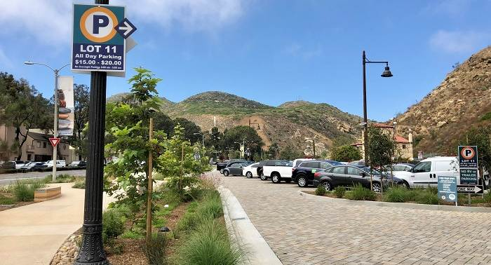 Lot 11 - Forest/Laguna Canyon Lot