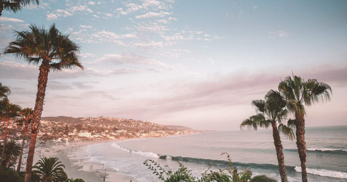 Dog Friendly Beach Rentals In Southern California